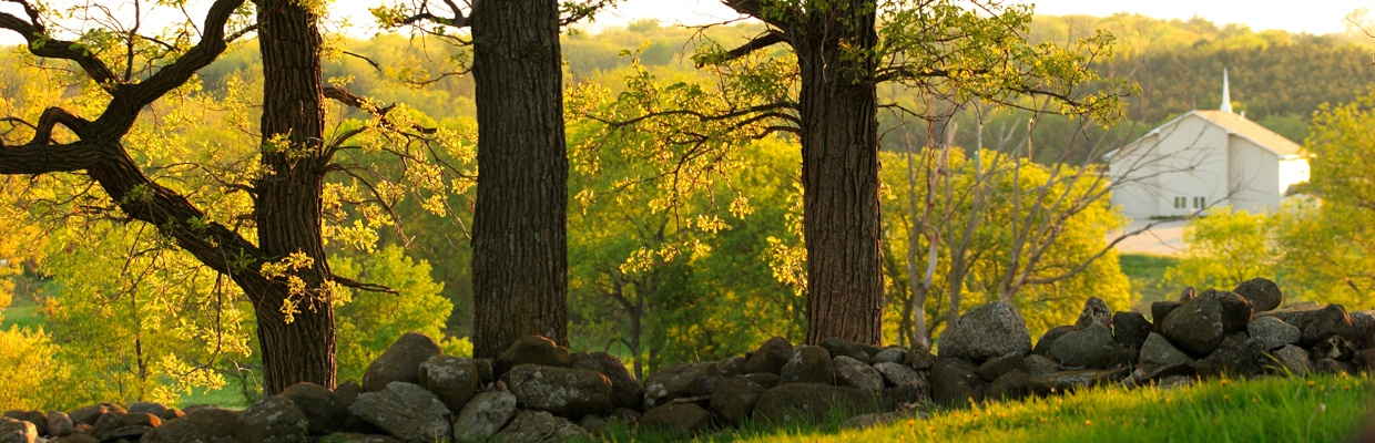 Welcome To Friends Of Pope Farm Conservancy Friends Of